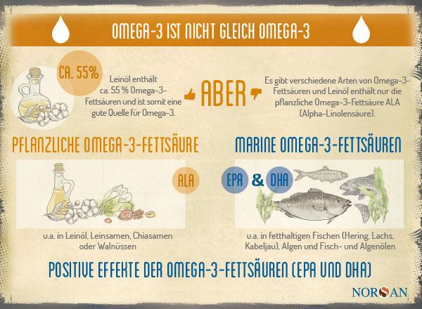 NORSAN_Infografik_Leinoel